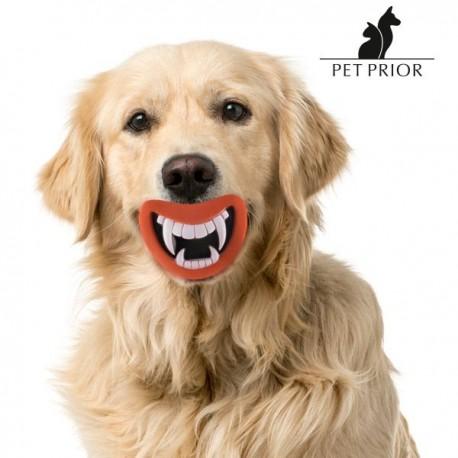 Koera Mänguasi Lõbus Piiksukas