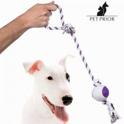 Koera Mänguasi - Nööriga Pall