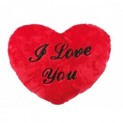 Pehme Süda I Love You 60 cm
