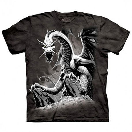 3D prindiga T-särk Black Dragon