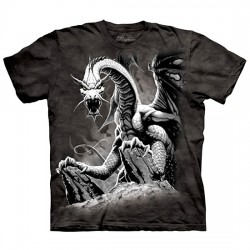 детская футболка с 3D принтом Black Dragon