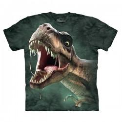 детская футболка с 3D принтом Roar
