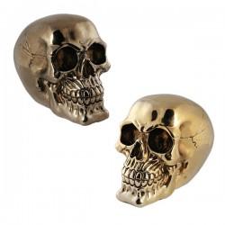 Rahakassa Metallic Skull