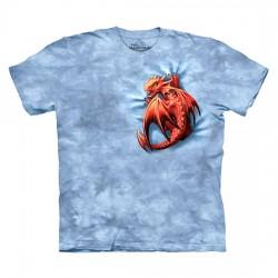 детская футболка с 3D принтом Wyrmling