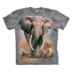 футболка с 3D принтом African Elephant
