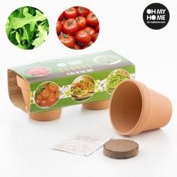 Maitsetaimede Kasvatamise Komplekt (tomat ja rukola)